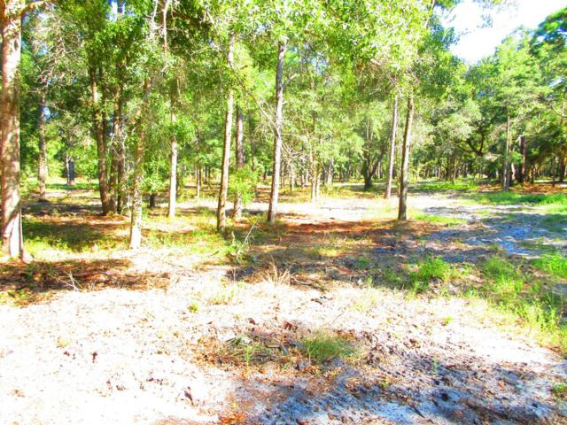 0 Putnal, CARRABELLE, FL 32322 (MLS #300075) :: Berkshire Hathaway HomeServices Beach Properties of Florida