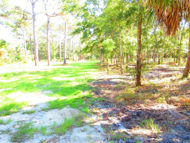 0 Putnal St, CARRABELLE, FL 32322 (MLS #300076) :: Berkshire Hathaway HomeServices Beach Properties of Florida
