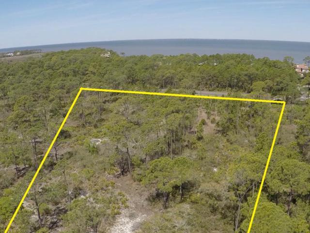 1372 Acacia Dr, ST. GEORGE ISLAND, FL 32328 (MLS #300105) :: Coastal Realty Group