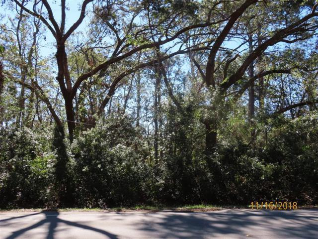 480 Bluff Rd, APALACHICOLA, FL 32320 (MLS #300221) :: Berkshire Hathaway HomeServices Beach Properties of Florida