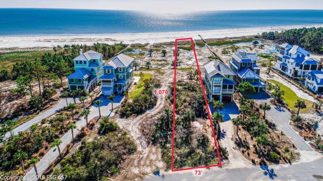 442 Jubilation Dr, CAPE SAN BLAS, FL 32456 (MLS #300269) :: The Naumann Group Real Estate, Coastal Office