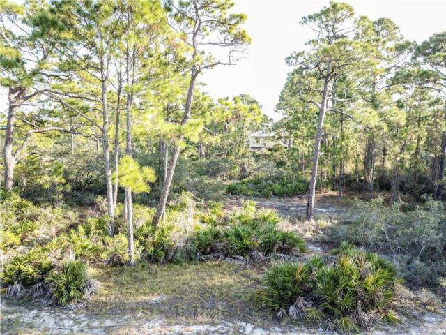 740 W Bayshore Dr, ST. GEORGE ISLAND, FL 32328 (MLS #300539) :: Coastal Realty Group