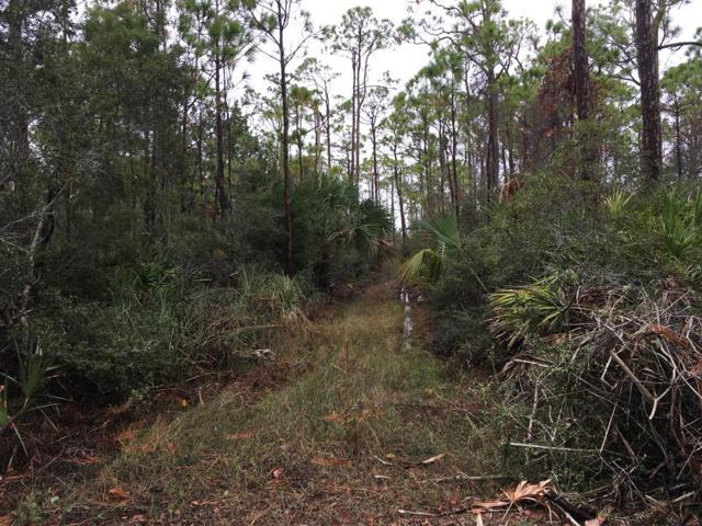 1823 Bayview Dr, ST. GEORGE ISLAND, FL 32328 (MLS #300540) :: Coastal Realty Group