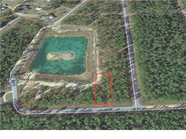 13 Trey's Ln, WEWAHITCHKA, FL 32465 (MLS #300650) :: CENTURY 21 Coast Properties