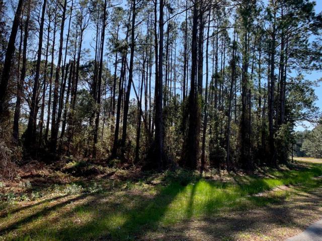 246 Boncyle Land Drive, EASTPOINT, FL 32328 (MLS #300680) :: CENTURY 21 Coast Properties
