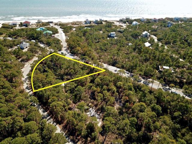 1287 Avocet Ln, ST. GEORGE ISLAND, FL 32328 (MLS #300727) :: Coastal Realty Group