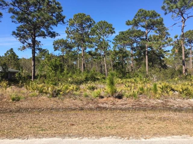 711 Timber Ridge Ct, EASTPOINT, FL 32328 (MLS #300733) :: CENTURY 21 Coast Properties
