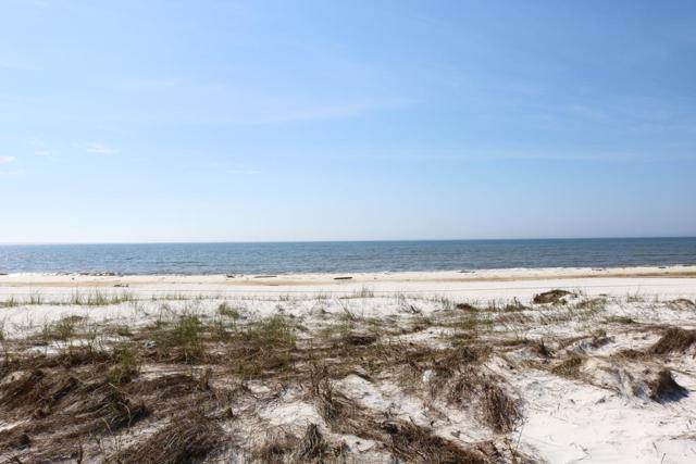 118 39TH ST S, MEXICO BEACH, FL 32456 (MLS #300841) :: CENTURY 21 Coast Properties