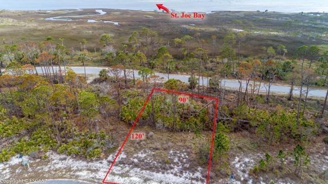 16 Park Point Cir, PORT ST. JOE, FL 32456 (MLS #300863) :: CENTURY 21 Coast Properties