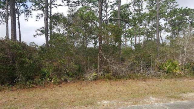 127 Anahinga Trail, CARRABELLE, FL 32322 (MLS #300865) :: CENTURY 21 Coast Properties