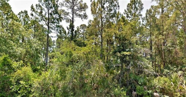 6 Cr 30-A, PORT ST. JOE, FL 32456 (MLS #301053) :: Berkshire Hathaway HomeServices Beach Properties of Florida