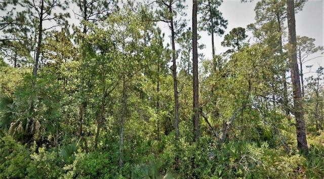 19 Cr-30 A, PORT ST. JOE, FL 32456 (MLS #301056) :: Berkshire Hathaway HomeServices Beach Properties of Florida