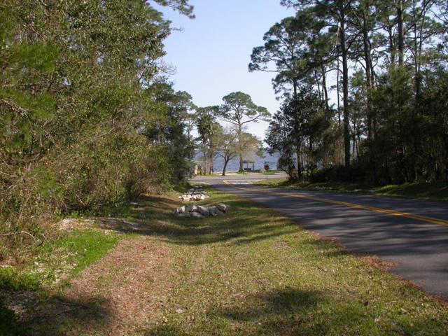 115 Georgia St, CARRABELLE, FL 32323 (MLS #301063) :: Coastal Realty Group