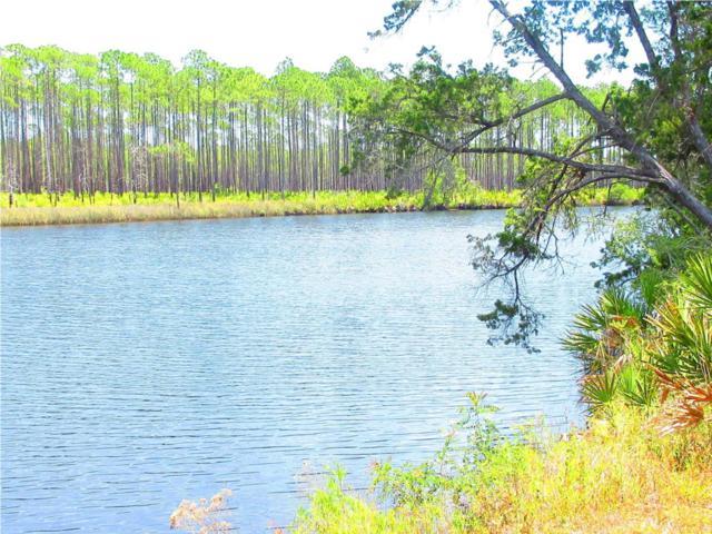 951 New River Harbor Rd, CARRABELLE, FL 32322 (MLS #301071) :: CENTURY 21 Coast Properties