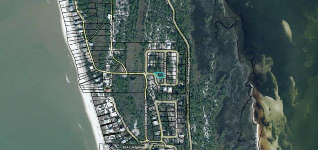 2 Labrador Dr, CAPE SAN BLAS, FL 32456 (MLS #301149) :: CENTURY 21 Coast Properties