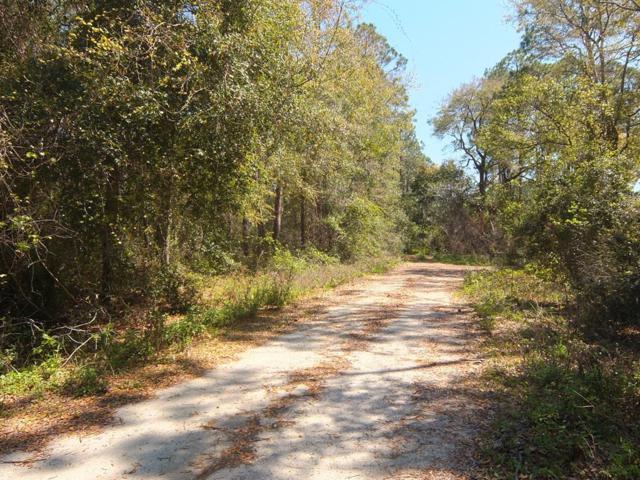 0 Hwy 67, CARRABELLE, FL 32322 (MLS #301152) :: CENTURY 21 Coast Properties