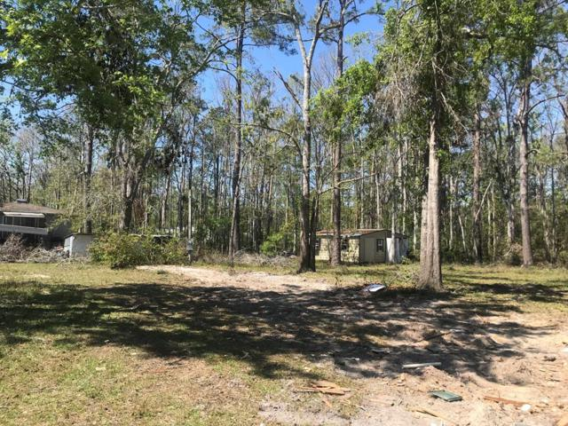 1772 Duck Ave, WEWAHITCHKA, FL 32465 (MLS #301156) :: Coastal Realty Group