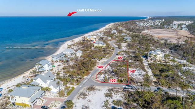 Lot 73 Windmark Way Lot 73, PORT ST. JOE, FL 32456 (MLS #301173) :: Coastal Realty Group