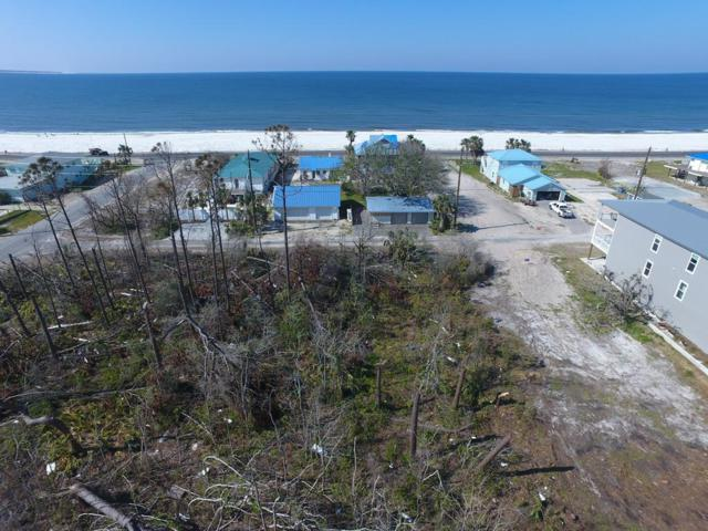 205 Fortner Ave, MEXICO BEACH, FL 32456 (MLS #301219) :: CENTURY 21 Coast Properties
