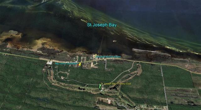 Lot 13 Colors Way, PORT ST. JOE, FL 32456 (MLS #301286) :: Coastal Realty Group