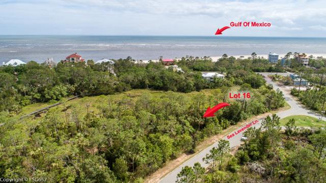 Lot 16 Sea Lavender Ln Lot 16, PORT ST. JOE, FL 32456 (MLS #301360) :: Coastal Realty Group