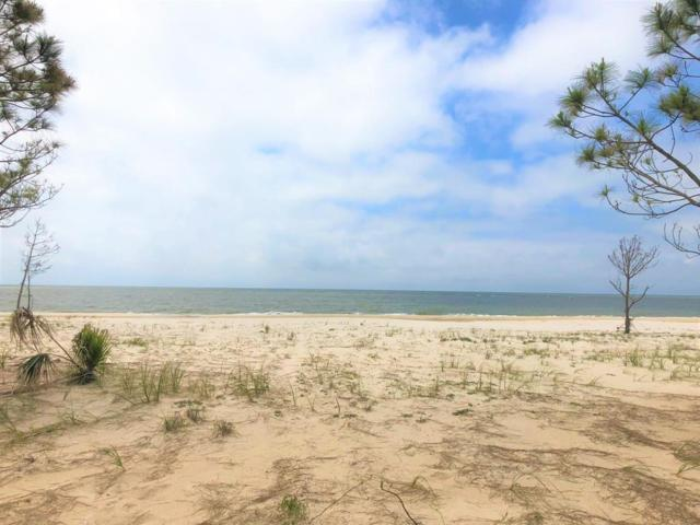 1638 Indianpass Road, PORT ST. JOE, FL 32456 (MLS #301377) :: Coastal Realty Group