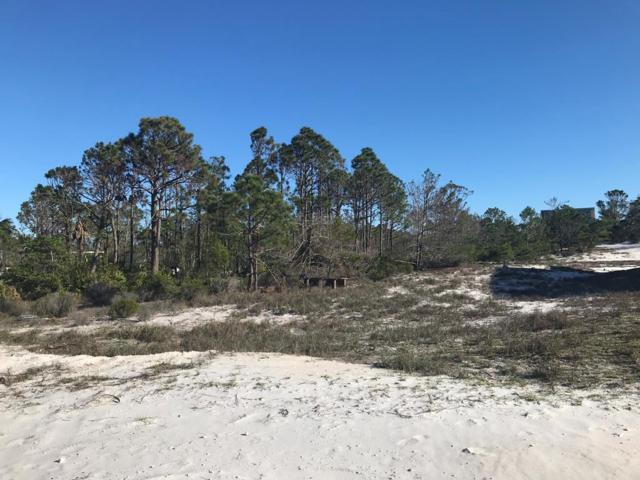 159 Sandlewood Blvd, CAPE SAN BLAS, FL 32456 (MLS #301392) :: Coastal Realty Group