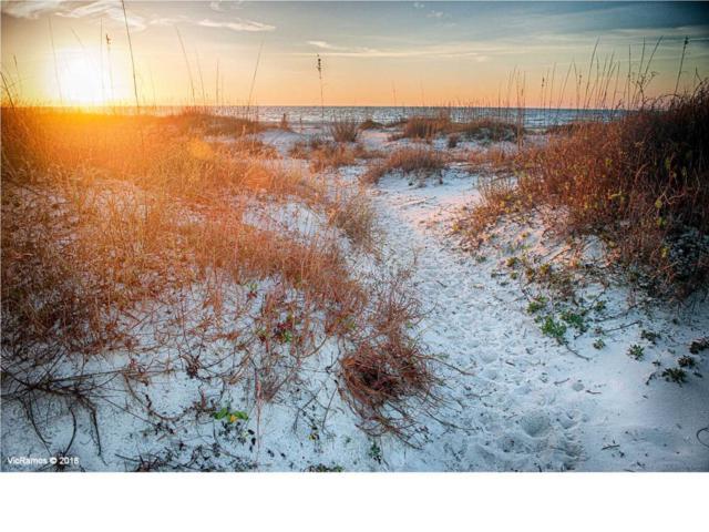 3 Gulf Front Dr, CAPE SAN BLAS, FL 32456 (MLS #301420) :: Coastal Realty Group