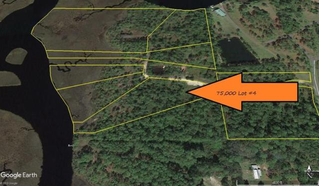 Lot 4 Jay Jay Way, CARRABELLE, FL 32322 (MLS #301446) :: Coastal Realty Group