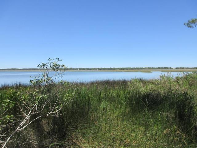 1252 Angus Morrison Rd, ALLIGATOR POINT, FL 32346 (MLS #301458) :: Coastal Realty Group