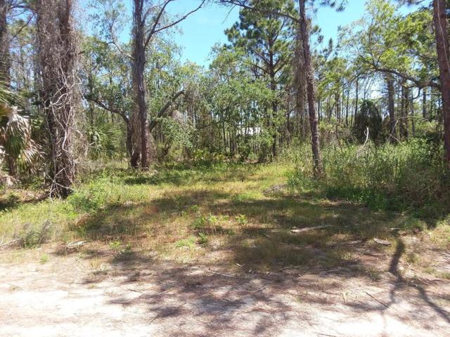 516 W Sawyer St, ST. GEORGE ISLAND, FL 32328 (MLS #301465) :: Berkshire Hathaway HomeServices Beach Properties of Florida