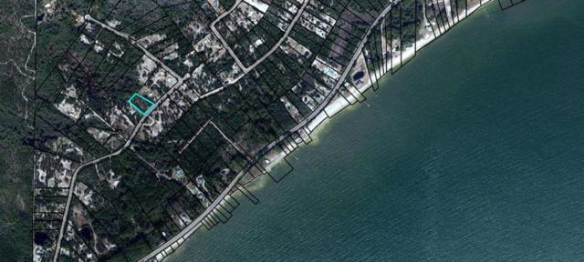 226 Woodill Rd, CARRABELLE, FL 32322 (MLS #301588) :: CENTURY 21 Coast Properties