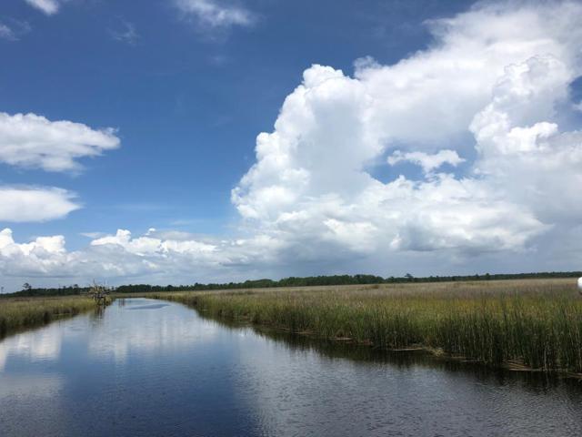 351 Smith Rd, APALACHICOLA, FL 32320 (MLS #301593) :: Coastal Realty Group