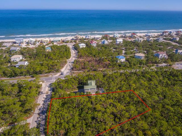 1935 Smugglers Cove Rd, ST. GEORGE ISLAND, FL 32328 (MLS #301599) :: Berkshire Hathaway HomeServices Beach Properties of Florida
