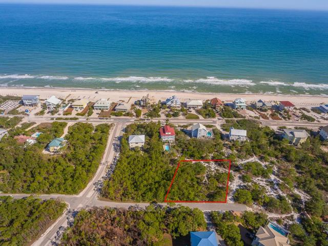 1928 Reed Ct West, ST. GEORGE ISLAND, FL 32328 (MLS #301601) :: Anchor Realty Florida