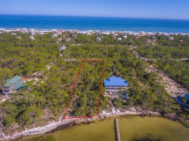 2023 Turpentine Trl, ST. GEORGE ISLAND, FL 32328 (MLS #301602) :: Coastal Realty Group