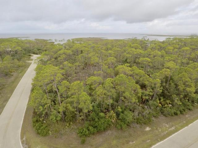 1735 Kingfisher Rd, ST. GEORGE ISLAND, FL 32328 (MLS #301641) :: Coastal Realty Group