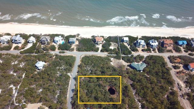 1644 Ivy Way, ST. GEORGE ISLAND, FL 32328 (MLS #301681) :: Coastal Realty Group