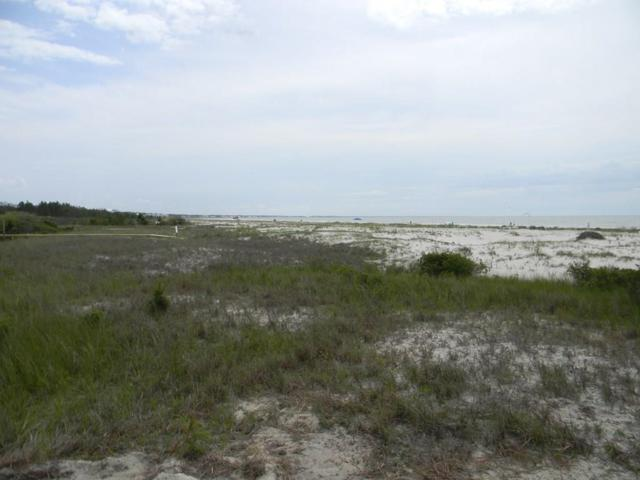 Lot 23 Turnstone Dr, CAPE SAN BLAS, FL 32456 (MLS #301690) :: The Naumann Group Real Estate, Coastal Office
