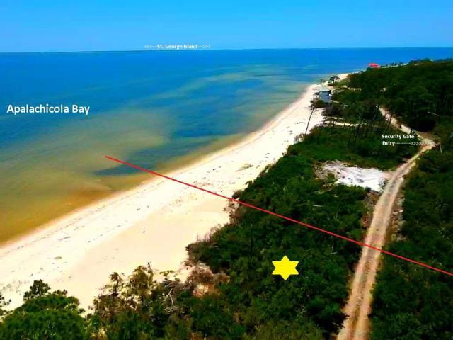 2774 Hidden Beaches Rd, CARRABELLE, FL 32322 (MLS #301769) :: CENTURY 21 Coast Properties