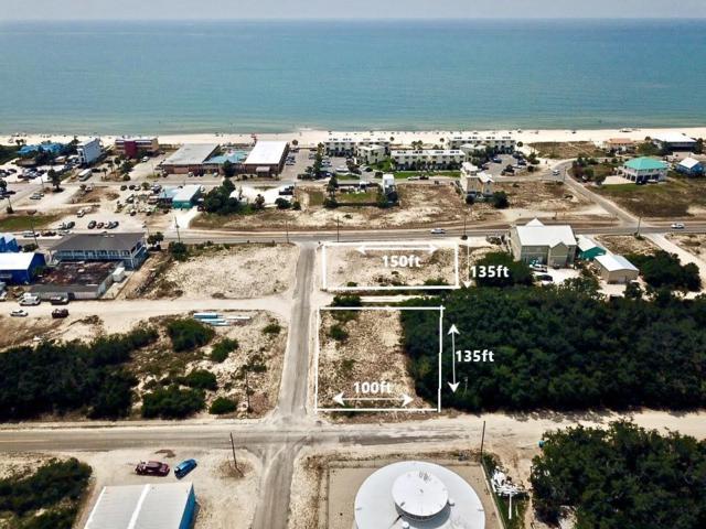 215 W Gulf Beach Dr, ST. GEORGE ISLAND, FL 32328 (MLS #301878) :: Coastal Realty Group