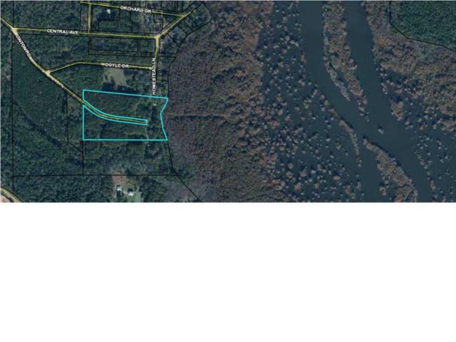 486 Linton Rd, WEWAHITCHKA, FL 32465 (MLS #301902) :: Coastal Realty Group