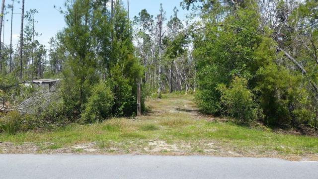 181 Spruce Ave, WEWAHITCHKA, FL 32465 (MLS #301967) :: Coastal Realty Group