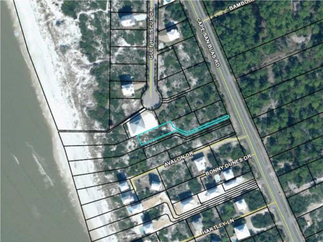 175 Christo Beach Ln, CAPE SAN BLAS, FL 32456 (MLS #301994) :: Coastal Realty Group