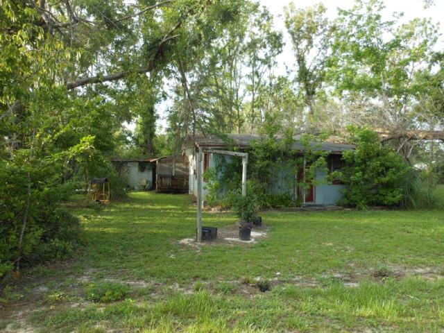 507 Pine Ave, WEWAHITCHKA, FL 32465 (MLS #302020) :: Coastal Realty Group