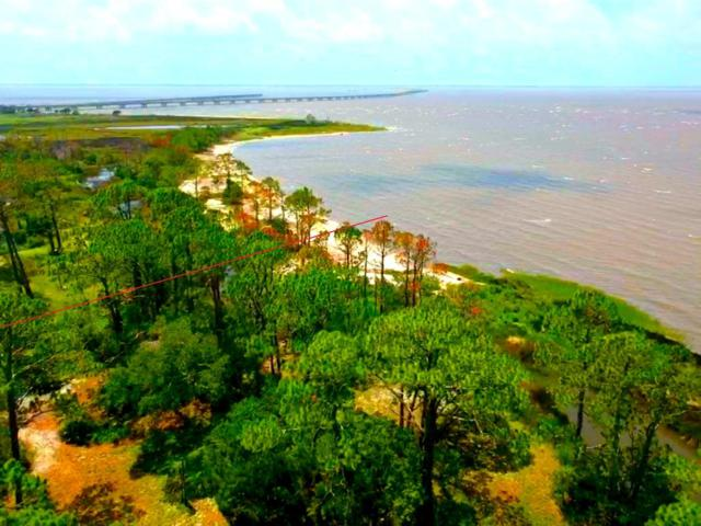 137 South Bayshore Dr, EASTPOINT, FL 32328 (MLS #302034) :: Coastal Realty Group