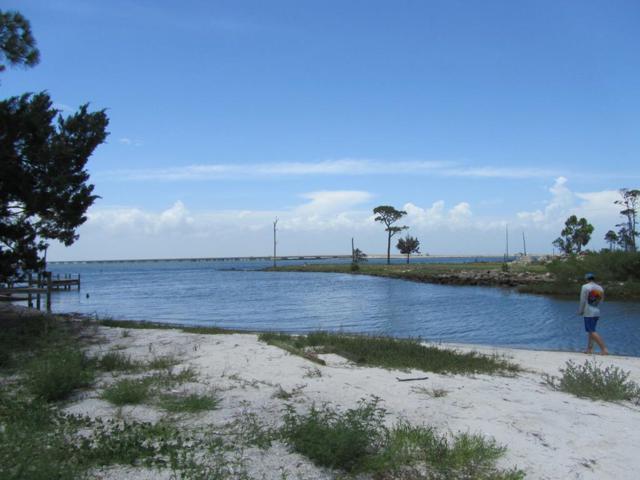 315 Gander St, ST. GEORGE ISLAND, FL 32328 (MLS #302041) :: Coastal Realty Group