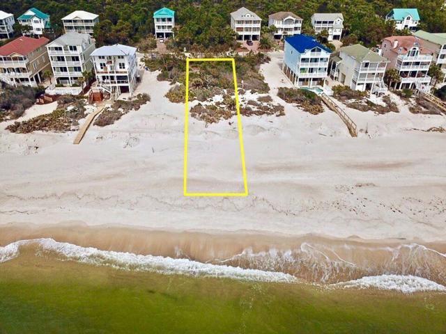 2238 Sailfish Dr, ST. GEORGE ISLAND, FL 32328 (MLS #302056) :: Coastal Realty Group