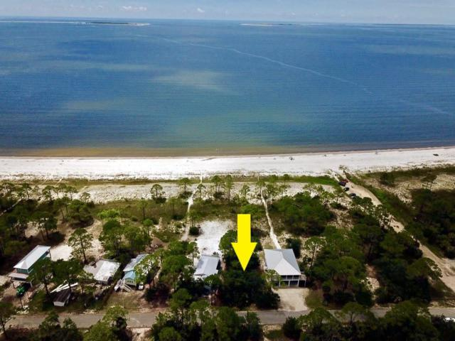 1732 Carrabelle Beach Dr, CARRABELLE, FL 32322 (MLS #302097) :: Coastal Realty Group
