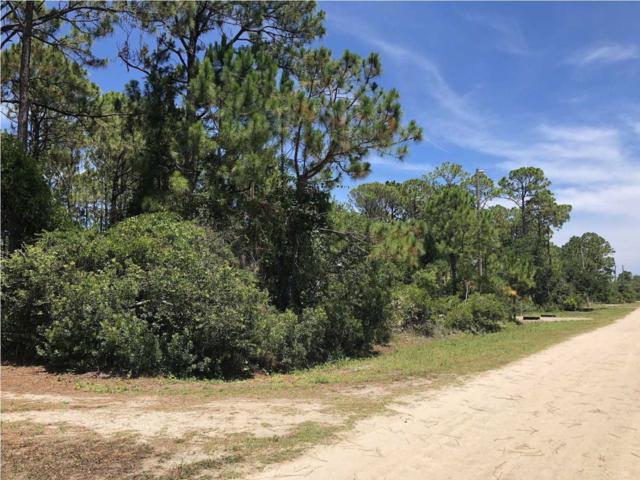 305 Brown St, ST. GEORGE ISLAND, FL 32328 (MLS #302183) :: Berkshire Hathaway HomeServices Beach Properties of Florida